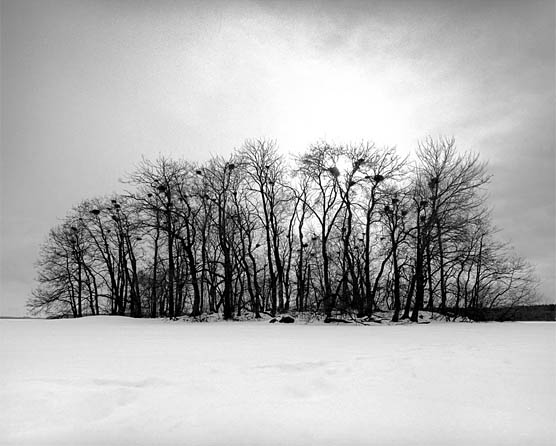 Photo series winter light - Dan Hummel, photoartist from Cologne, Germany